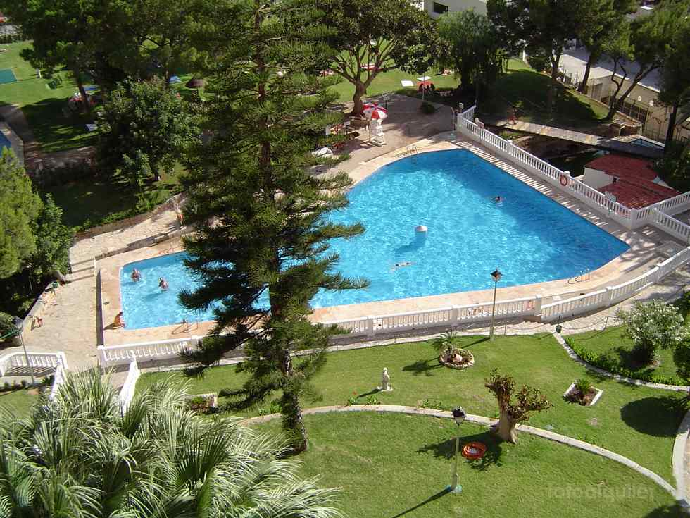 Alquiler de estudio en la urbanización Playmon Park, Benidorm, Alicante, ref.: benidorm8360
