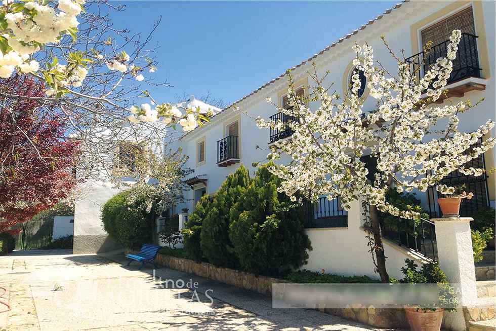Apartamentos Rurales El Molino de Morillas, en Galera, Granada.