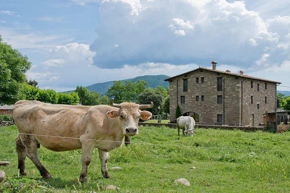 El Ferrés, Casa rural por habitaciones con todas las comodidades en Joanetes, Girona.   Ref.: elferres