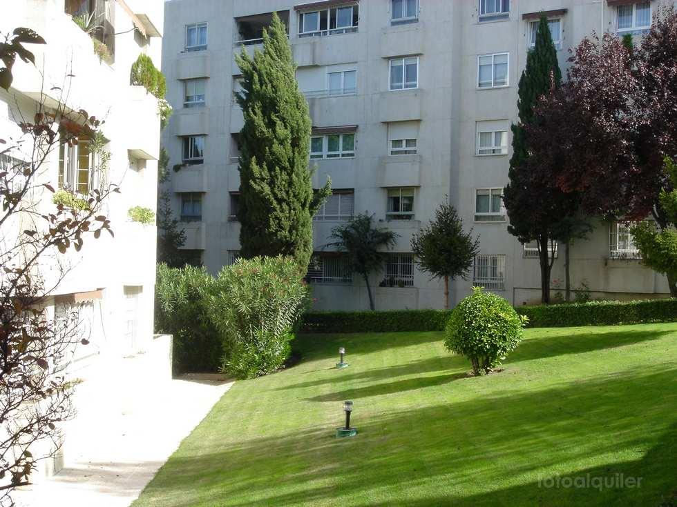 Alquiler de piso en Madrid, ref.:  madrid3078