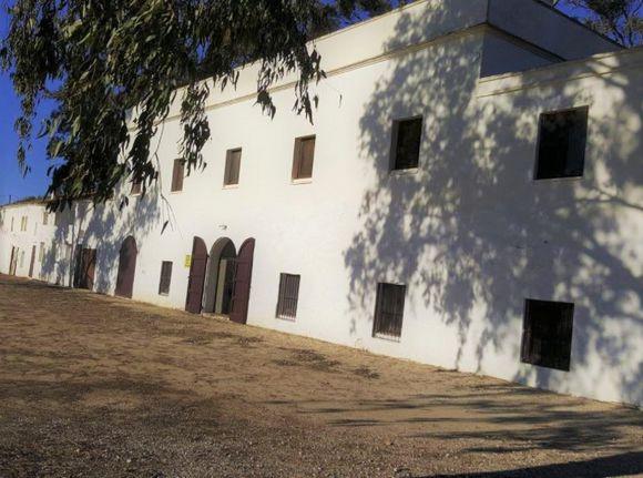 Delta del Ebro. Casa rural Mas Illa de Riu en Sant Jaume D´Enveja, Tarragona.