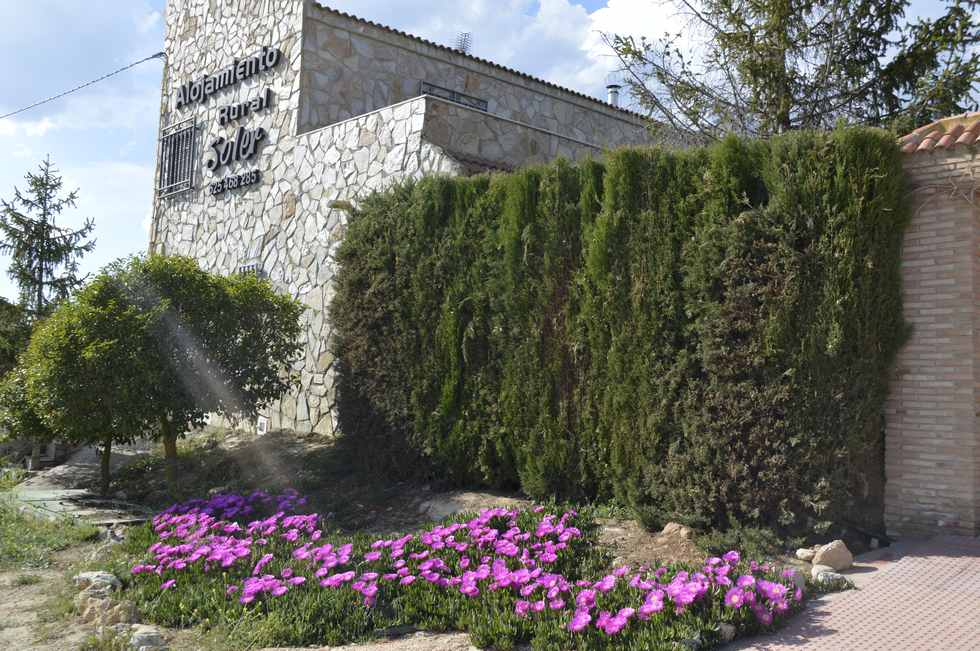 Alojamiento Rural Soler, casa de campo con jardin y piscina en Pozo Alcón, Jaén
